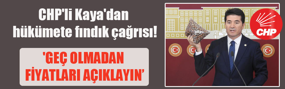 CHP'li Kaya'dan hükümete fındık çağrısı! 'Geç olmadan fiyatları açıklayın'