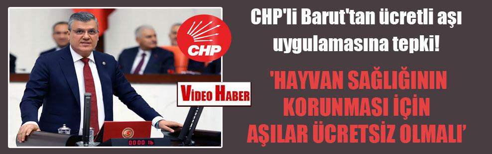 CHP'li Barut'tan ücretli aşı uygulamasına tepki!  'Hayvan sağlığının korunması için aşılar ücretsiz olmalı'