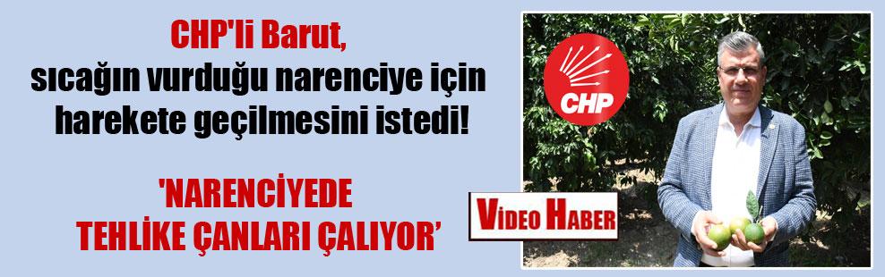 CHP'li Barut, sıcağın vurduğu narenciye için harekete geçilmesini istedi! 'Narenciyede tehlike çanları çalıyor'