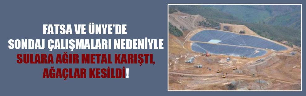 Fatsa ve Ünye'de sondaj çalışmaları nedeniyle sulara ağır metal karıştı, ağaçlar kesildi!