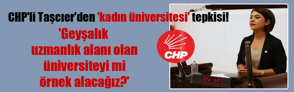 CHP'li Taşcıer'den 'kadın üniversitesi' tepkisi! 'Geyşalık uzmanlık alanı olan üniversiteyi mi örnek alacağız?'