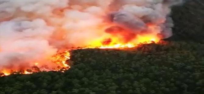 Muğla'daki orman yangını 'kısmen kontrol altında'