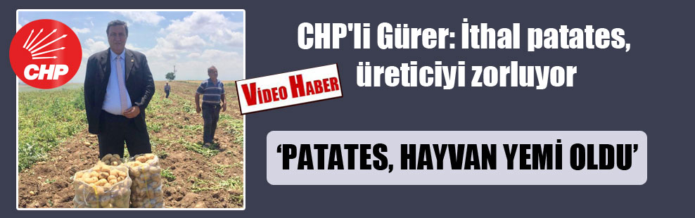 CHP'li Gürer: İthal patates, üreticiyi zorluyor