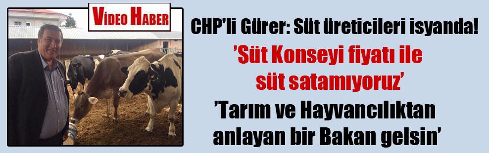 CHP'li Gürer: Süt üreticileri isyanda!