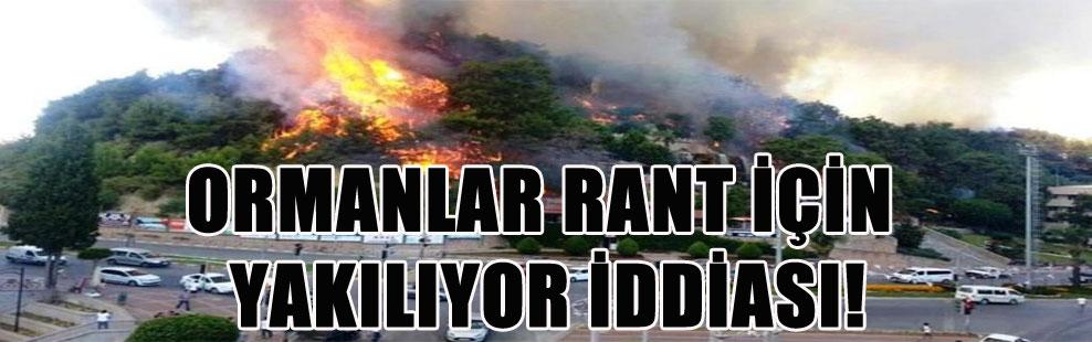 ORMANLAR RANT İÇİN YAKILIYOR İDDİASI!