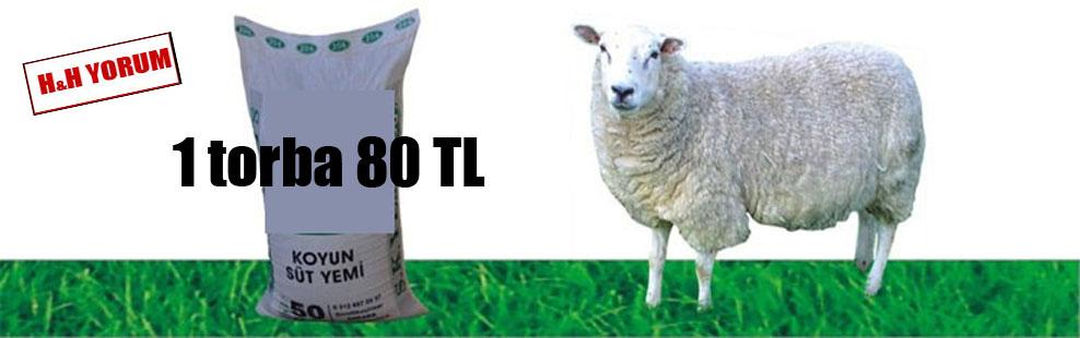 1 torba 80 TL
