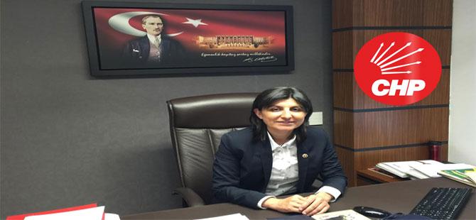 CHP'li Özdemir: On Birinci Kalkınma Planı sorunları çözme temennilerinin kâğıda dökülmesinden öteye geçmemekte