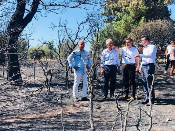 Gelibolu Yarımadası Orman Yangını (14)