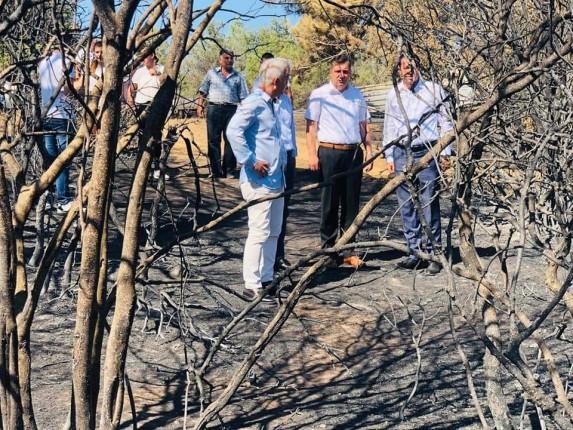 Gelibolu Yarımadası Orman Yangını (16)