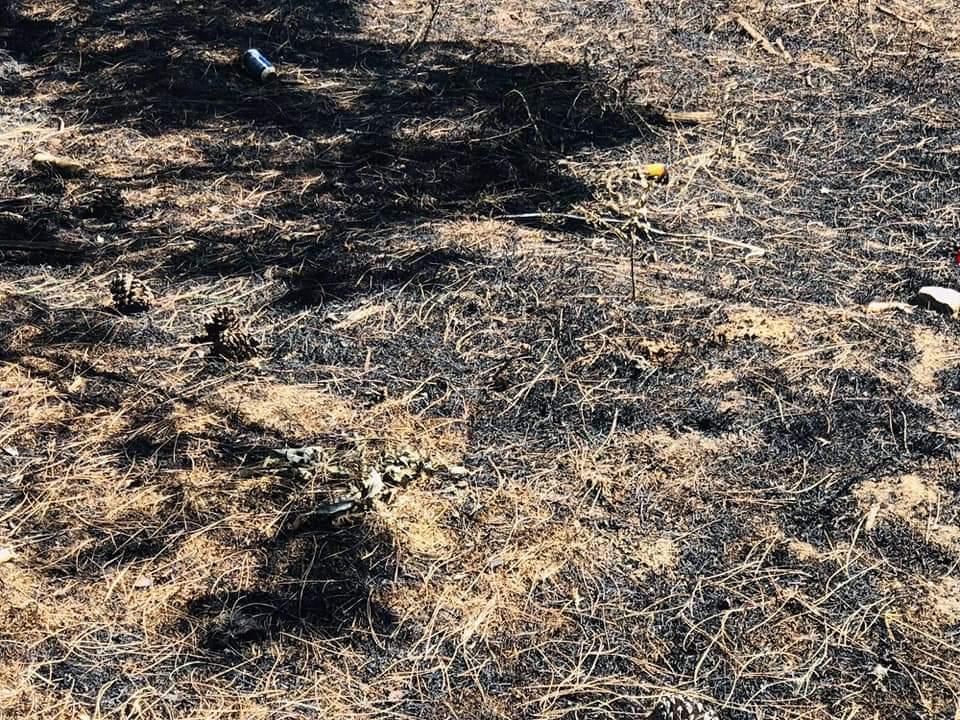 Adana Kozan'daki orman yangını sebebiyle 6 köy boşaltıldı