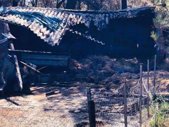 Gelibolu Yarımadası Orman Yangını (9)