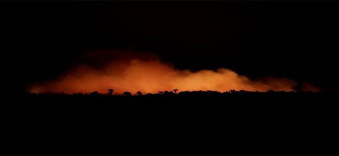 Amazon yangınları Brezilya ve Fransa arasında polemik konusu oldu