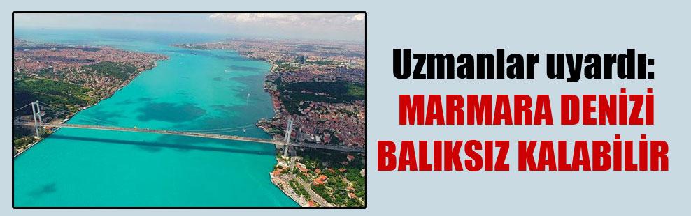 Uzmanlar uyardı: Marmara Denizi balıksız kalabilir
