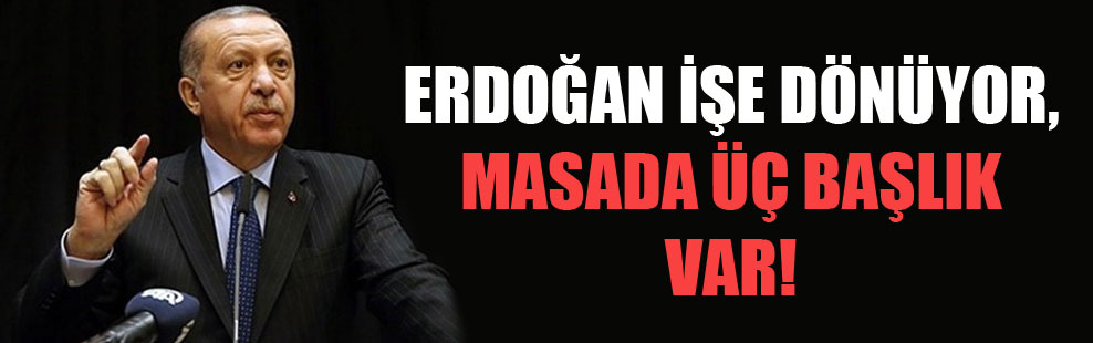Erdoğan işe dönüyor masada üç başlık var!