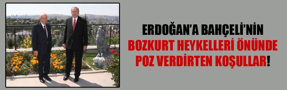 Erdoğan'a Bahçeli'nin bozkurt heykelleri önünde poz verdirten koşullar!