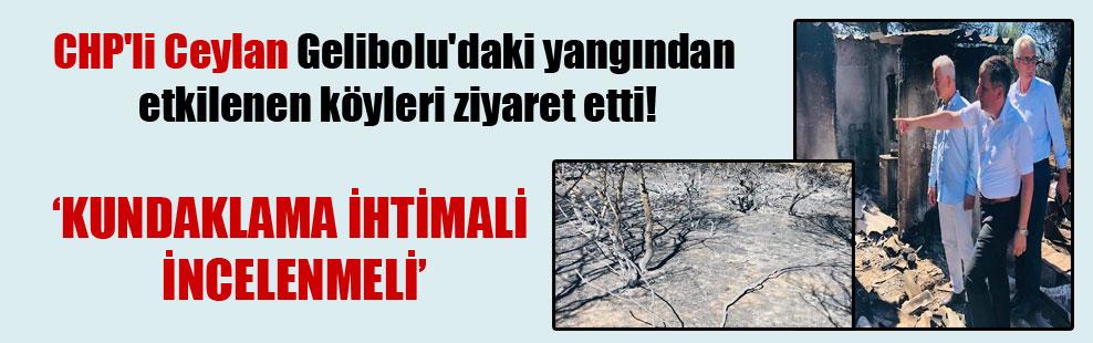 CHP'li Ceylan Gelibolu'daki yangından etkilenen köyleri ziyaret etti!