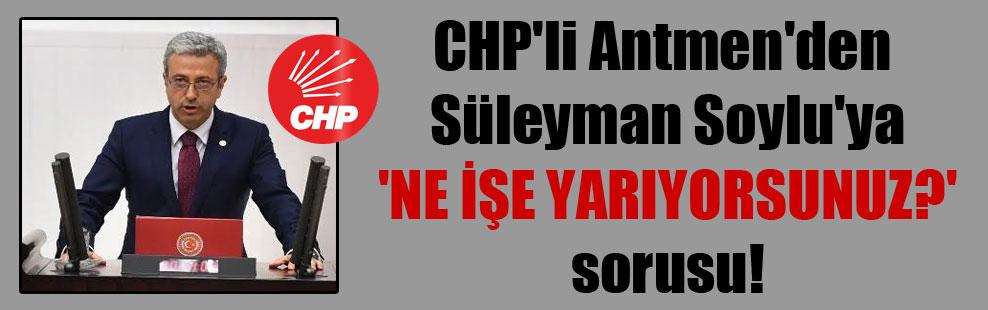 CHP'li Antmen'den Süleyman Soylu'ya 'Ne işe yarıyorsunuz?' sorusu!