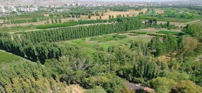 Atatürk Orman Çiftliği arazisindeki yangın kontrol altına alındı!