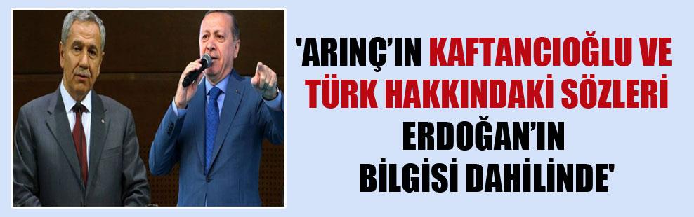 'Arınç'ın Kaftancıoğlu ve Türk hakkındaki sözleri Erdoğan'ın bilgisi dahilinde'