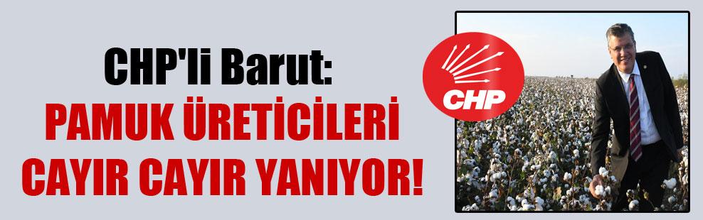 CHP'li Barut: Pamuk üreticileri cayır cayır yanıyor!