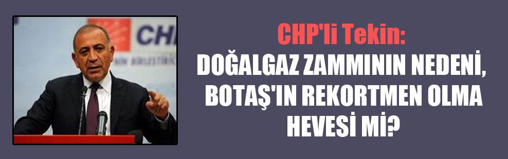 CHP'li Tekin: Doğalgaz zammının nedeni, BOTAŞ'ın rekortmen olma hevesi mi?