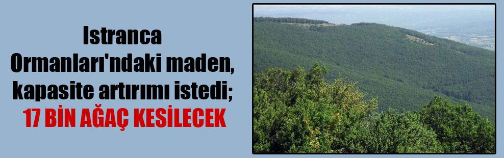 Istranca Ormanları'ndaki maden, kapasite artırımı istedi; 17 bin ağaç kesilecek