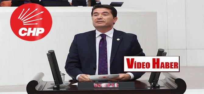 CHP'li Kaya: Busenaz Sürmeneli gururumuz oldu!