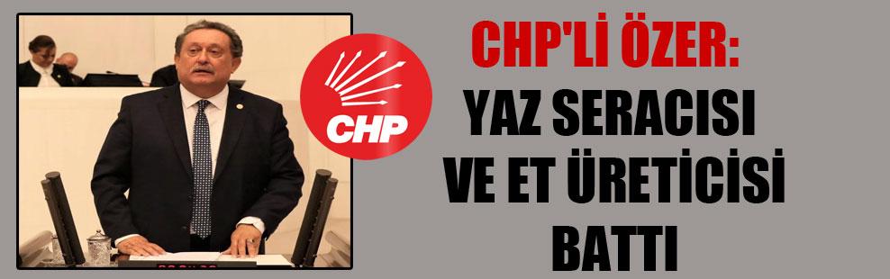 CHP'li Özer: Yaz seracısı ve et üreticisi battı!