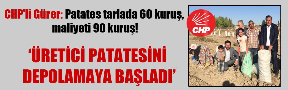 CHP'li Gürer: Patates tarlada 60 kuruş, maliyeti 90 kuruş!