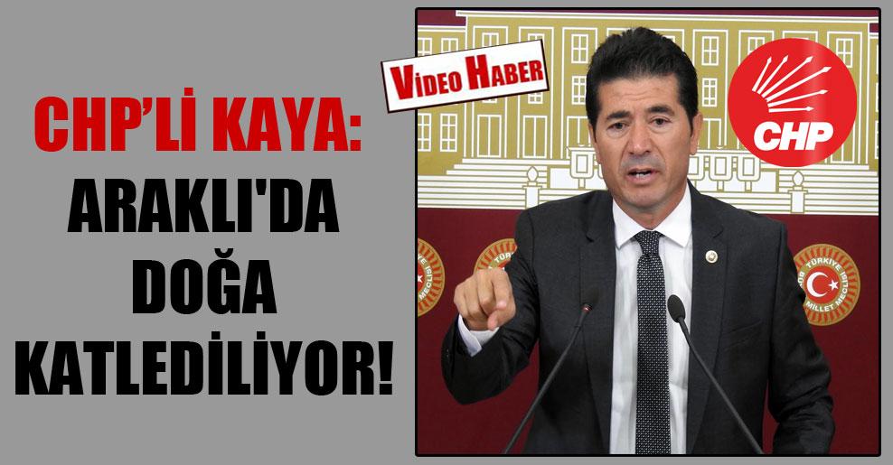 CHP'li Kaya: Araklı'da doğa katlediliyor!