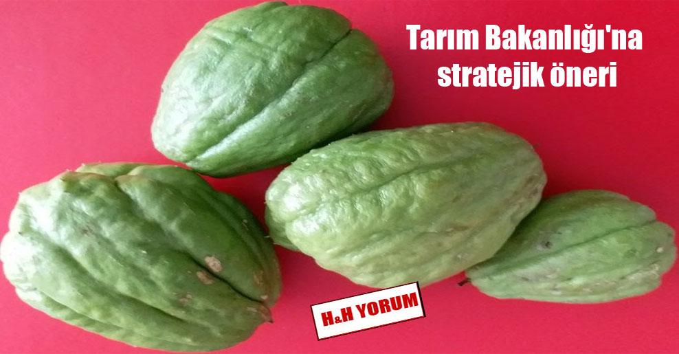 Tarım Bakanlığı'na stratejik öneri