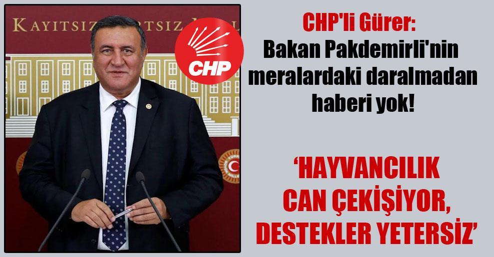 CHP'li Gürer: Bakan Pakdemirli'nin meralardaki daralmadan haberi yok!