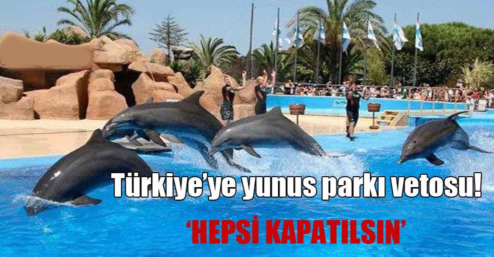 Türkiye'ye yunus parkı vetosu!