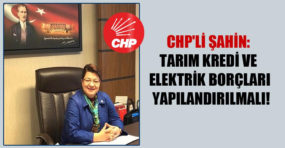CHP'li Şahin: Tarım kredi ve elektrik borçları yapılandırılmalı!