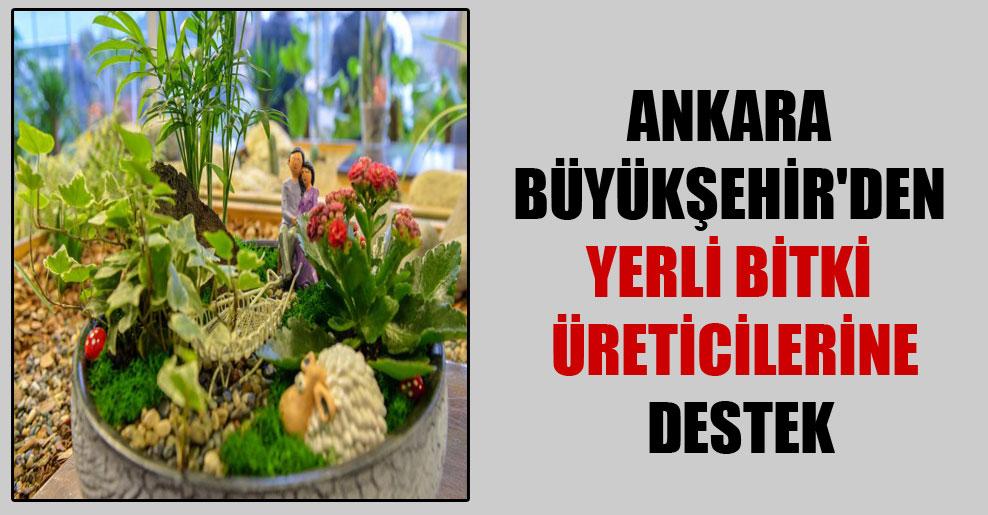 Ankara Büyükşehir'den yerli bitki üreticilerine destek