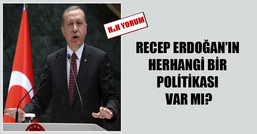 Recep Erdoğan'ın herhangi bir politikası var mı?