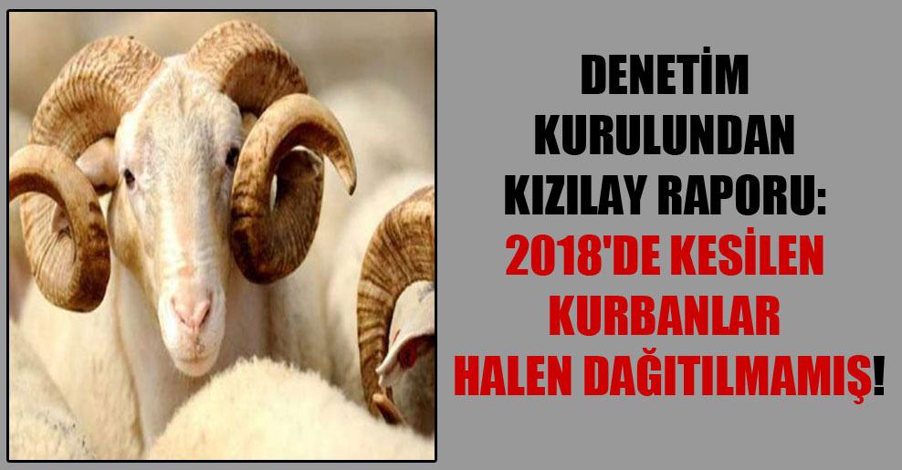 Denetim kurulundan Kızılay raporu: 2018'de kesilen kurbanlar halen dağıtılmamış!