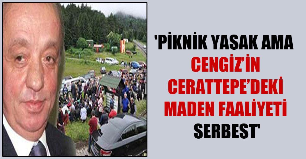 'Piknik yasak ama Cengiz'in Cerattepe'deki maden faaliyeti serbest'