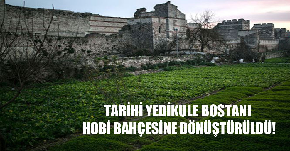 Tarihi Yedikule Bostanı hobi bahçesine dönüştürüldü!