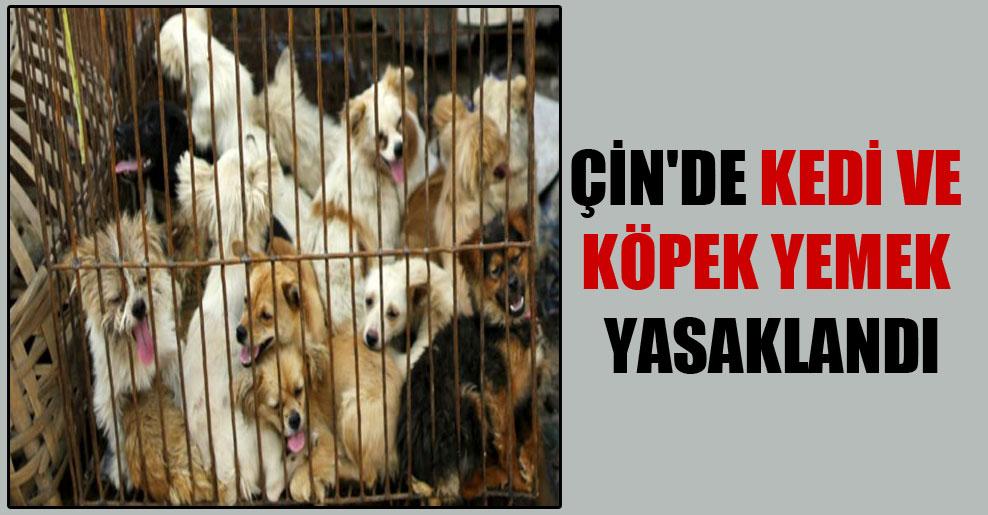 Çin'de kedi ve köpek yemek yasaklandı
