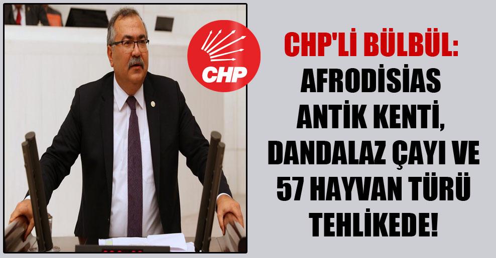 CHP'li Bülbül: Afrodisias Antik Kenti, Dandalaz Çayı ve 57 hayvan türü tehlikede!