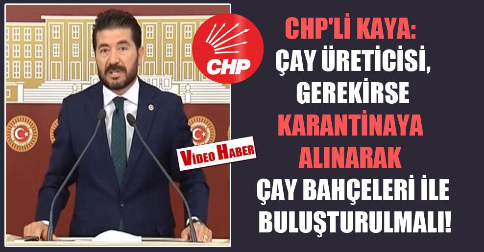 CHP'li Kaya: Çay üreticisi, gerekirse karantinaya alınarak çay bahçeleri ile buluşturulmalı!