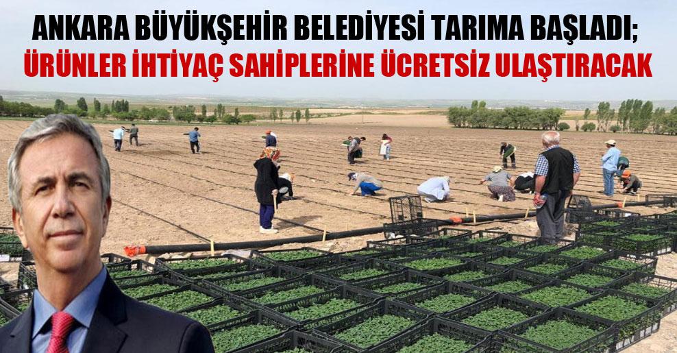 Ankara Büyükşehir Belediyesi tarıma başladı; ürünler ihtiyaç sahiplerine ücretsiz ulaştıracak