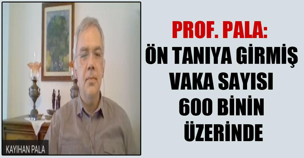Prof. Pala: Ön tanıya girmiş vaka sayısı 600 binin üzerinde