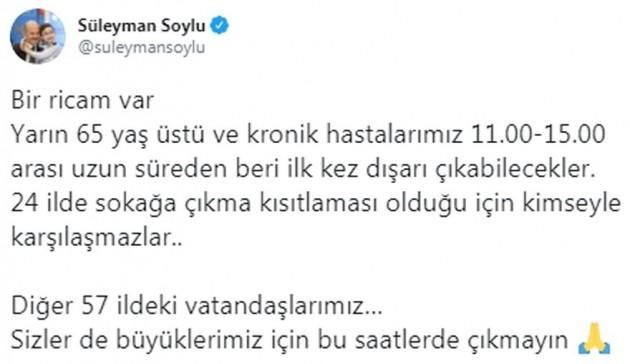 soylu-1