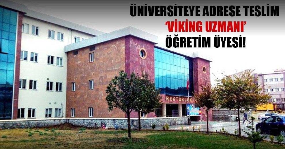 Üniversiteye adrese teslim 'Viking Uzmanı' öğretim üyesi!