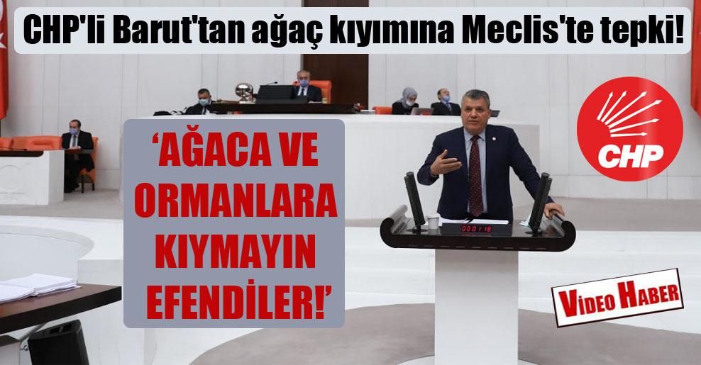 CHP'li Barut'tan Meclis'te ağaç kıyımına tepki!