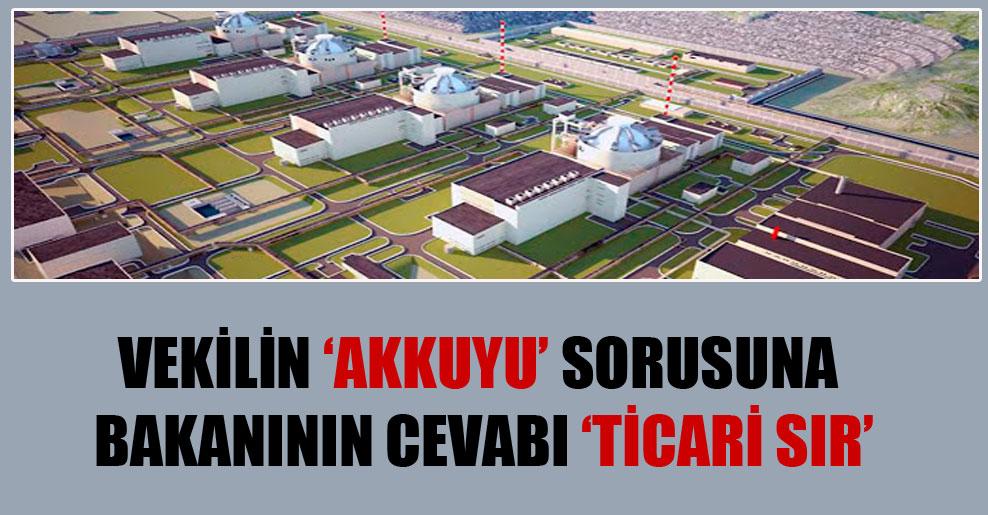 Vekilin 'Akkuyu' sorusuna bakanının cevabı 'Ticari sır'