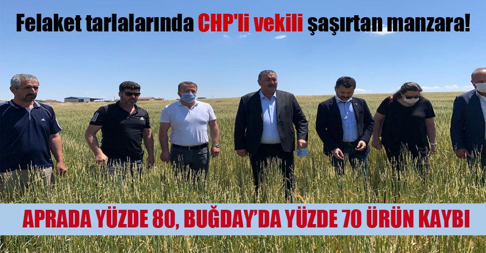 Felaket tarlalarında CHP'li vekili şaşırtan manzara!