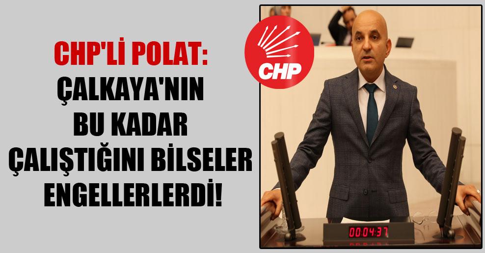 CHP'li Polat: Çalkaya'nın bu kadar çalıştığını bilseler engellerlerdi!